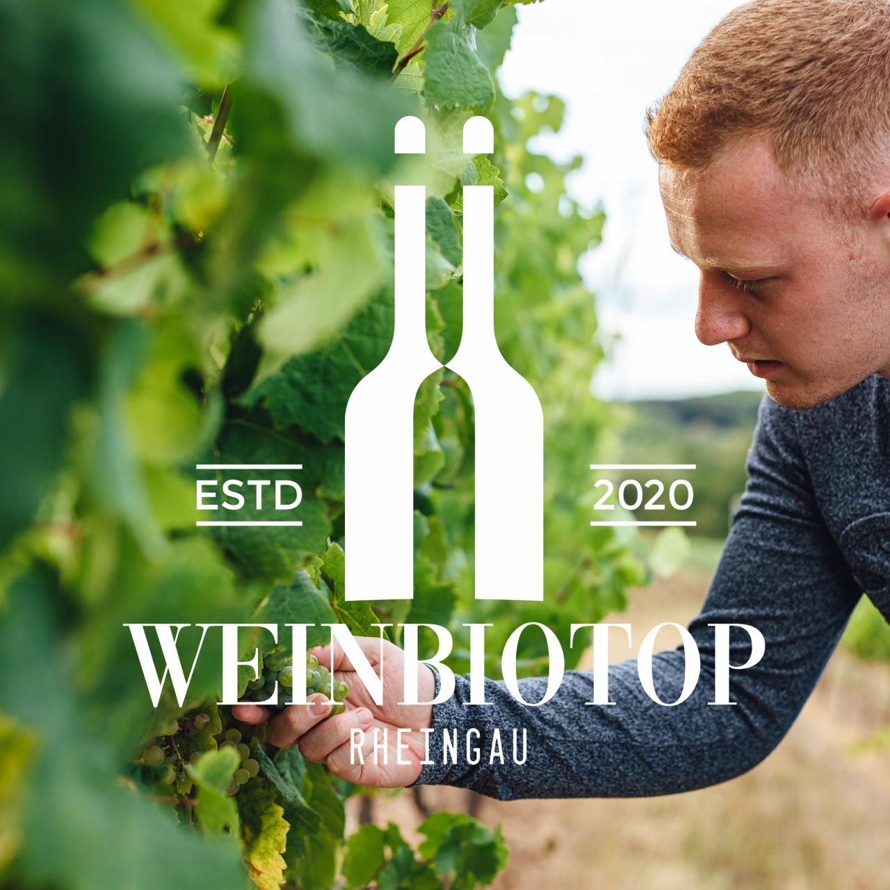 Das Weinbiotop Logo von Agentur Parrot